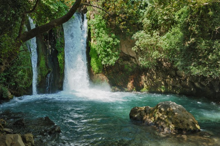 שמורת הטבע בניאס
